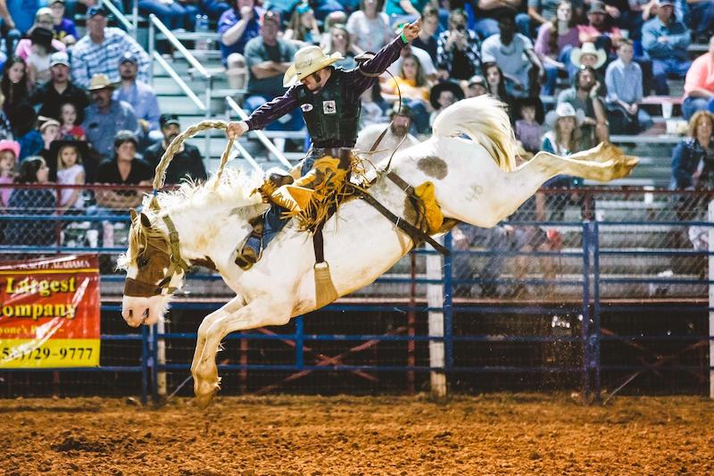 Save, Build, and Change Lives at the Lone Star Rodeo!